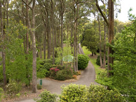 Mount Lofty Botanic Garden - Accommodation Mooloolaba