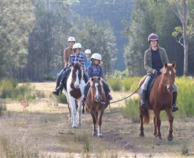 Horse Riding at Oaks Ranch and Country Club - Accommodation Mooloolaba