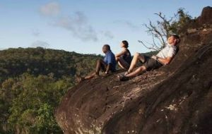 Cooktown Aboriginal Art Tours - Accommodation Mooloolaba